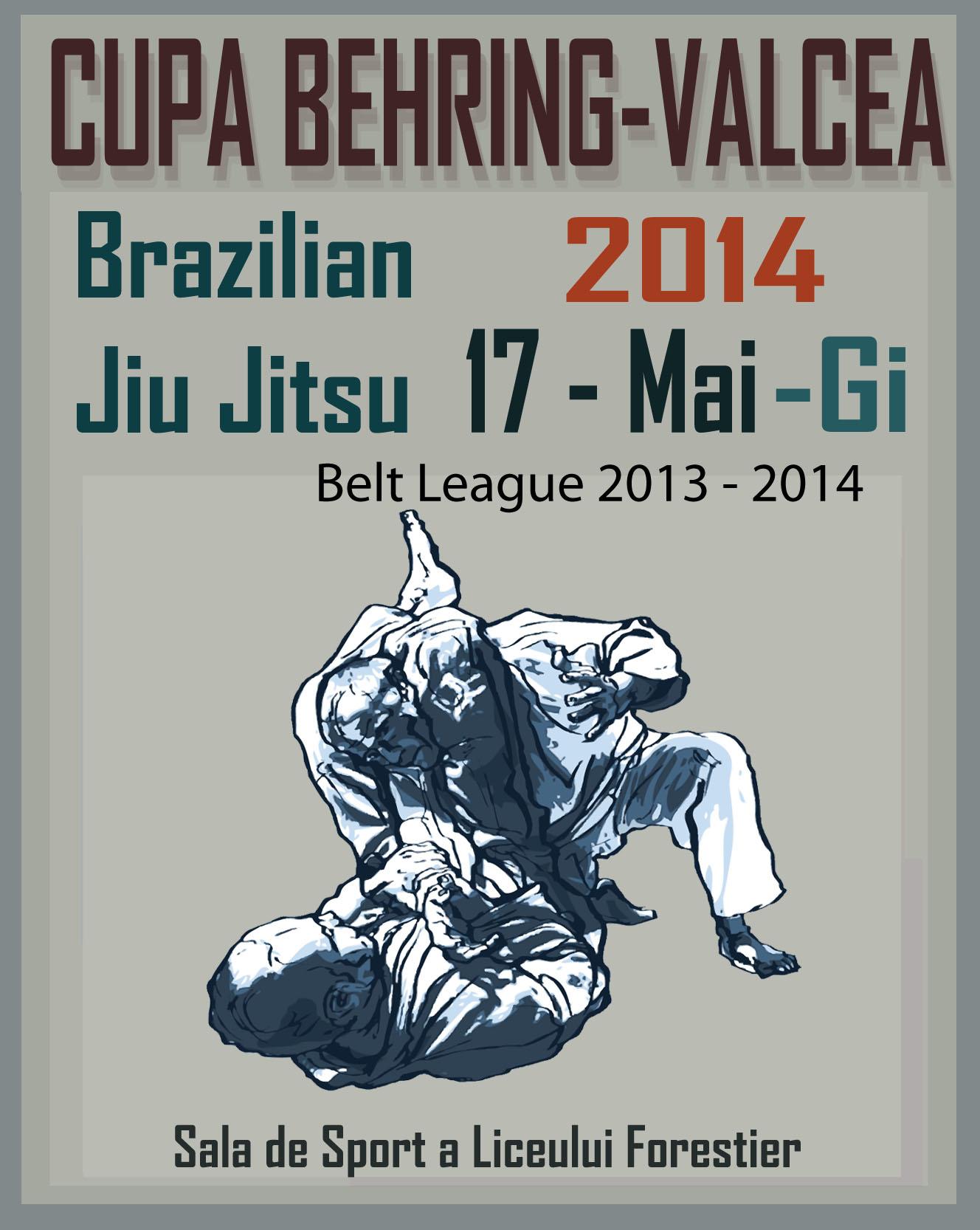 Competitia Valcea  Gi-2014_belt_league
